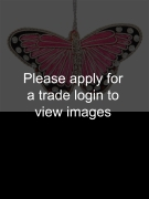 Personalised Fuchsia Satin Butterfly SS NATURE